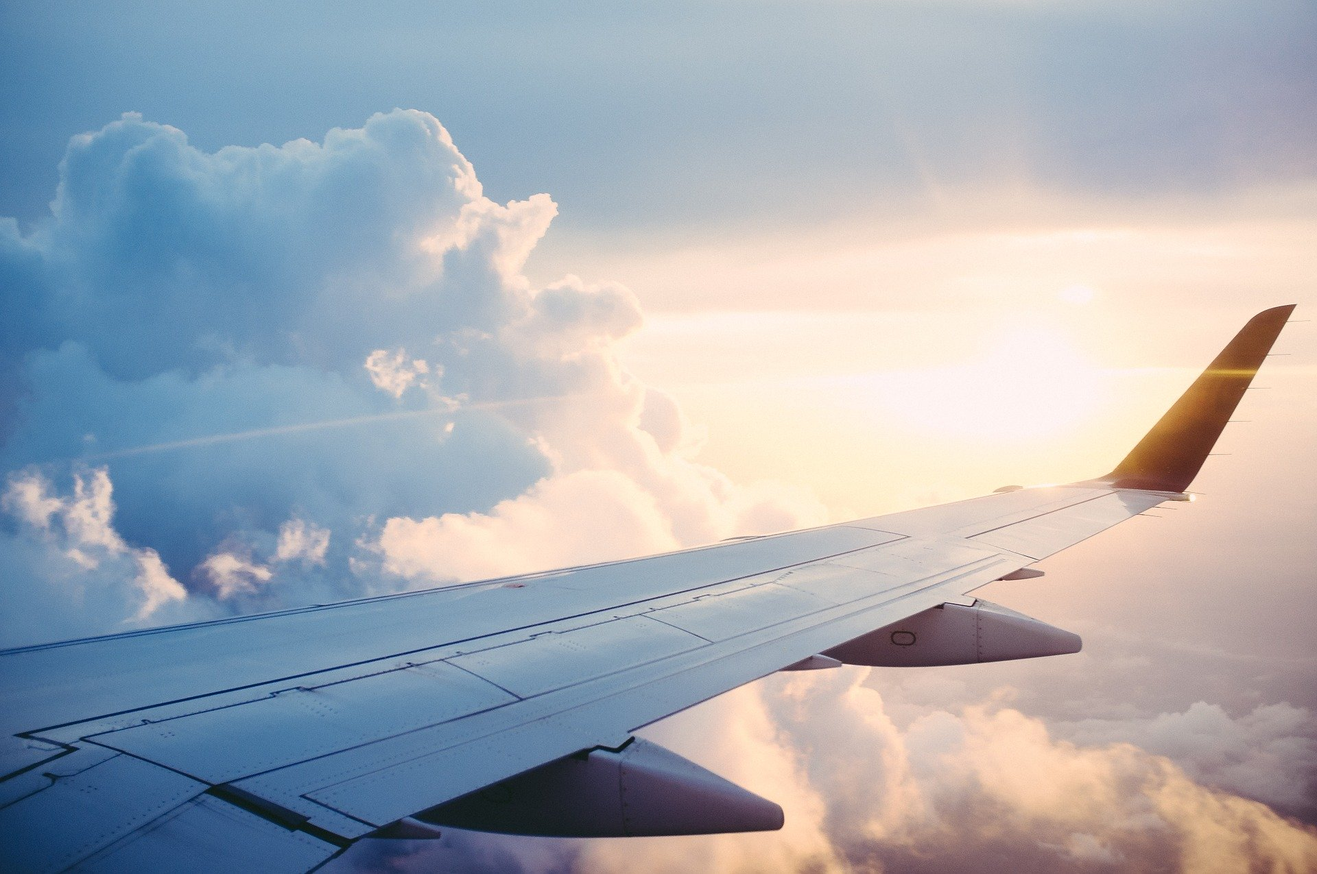 vliegtuigvleugel
